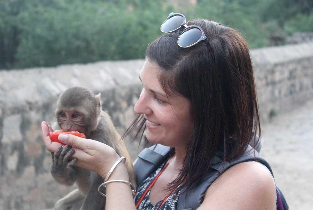 feeding-monkey-temple-jaipur-india
