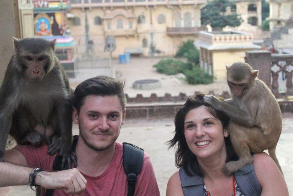 monkeys-temple-jaipur-india