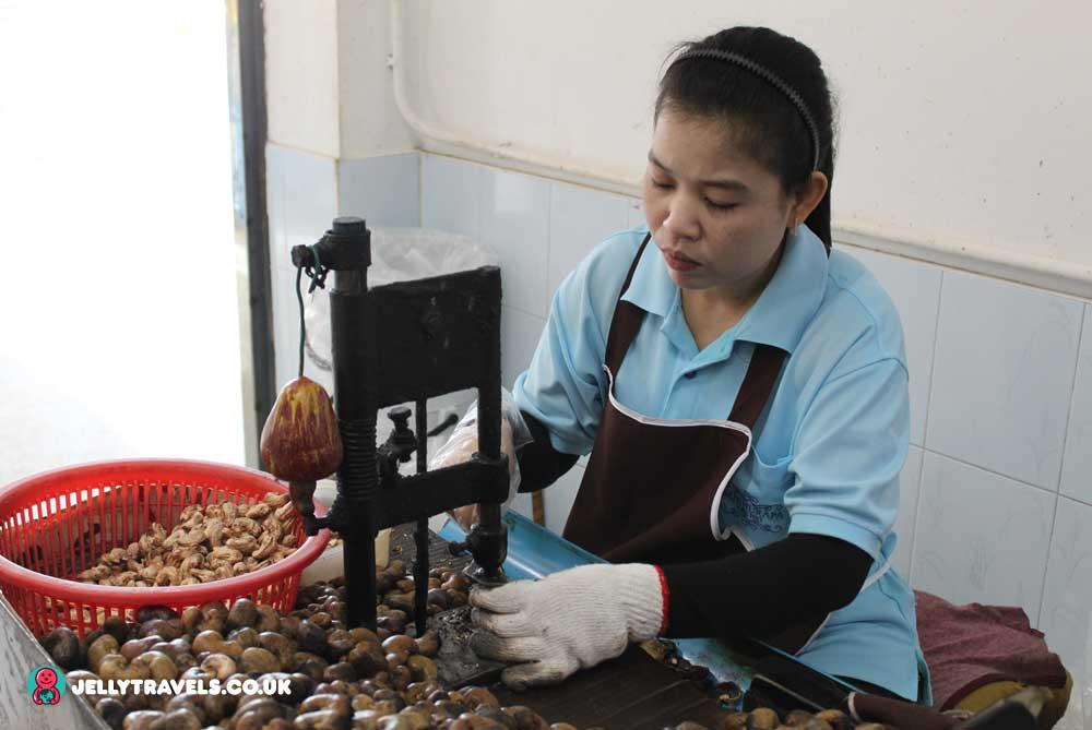 cashnew-nut-factory-phuket-thailand