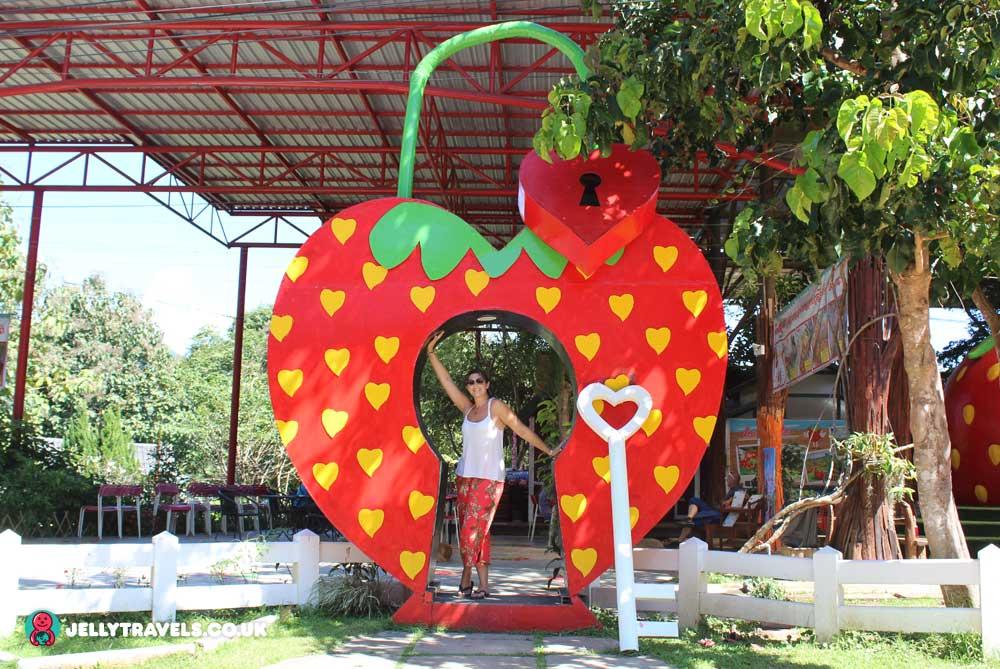 kelly-love-strawberry-pai-thailand
