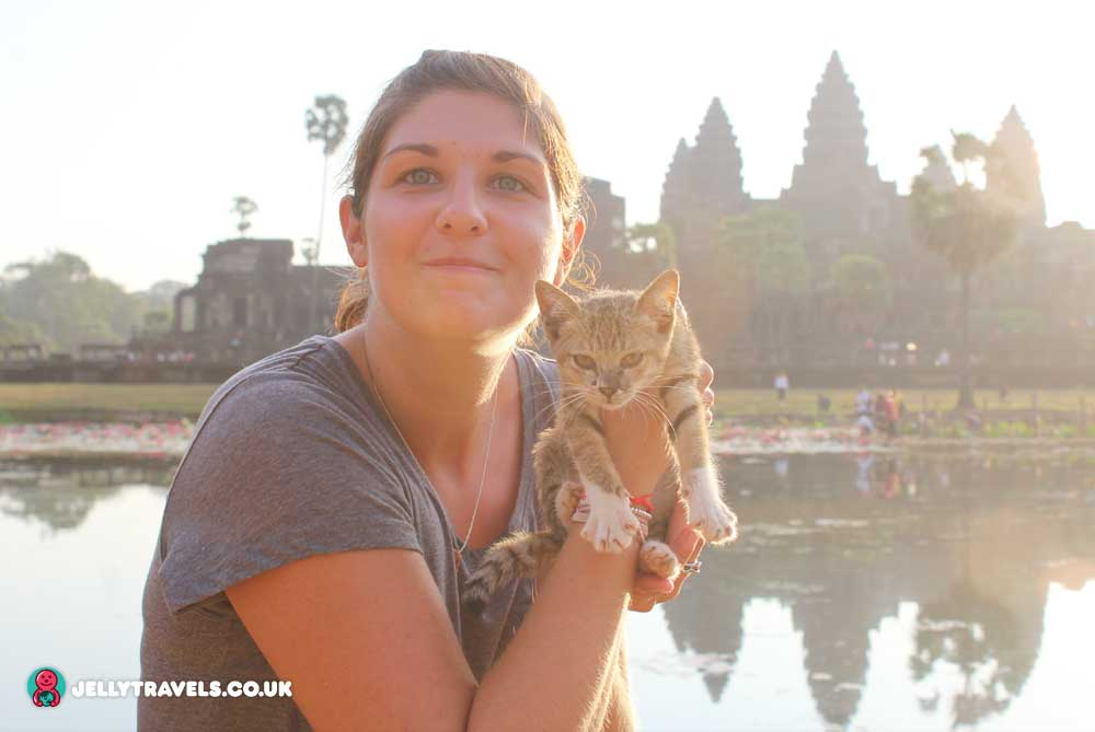 cat-angkor-wat-temple-sunrise-siem-reap-cambodia