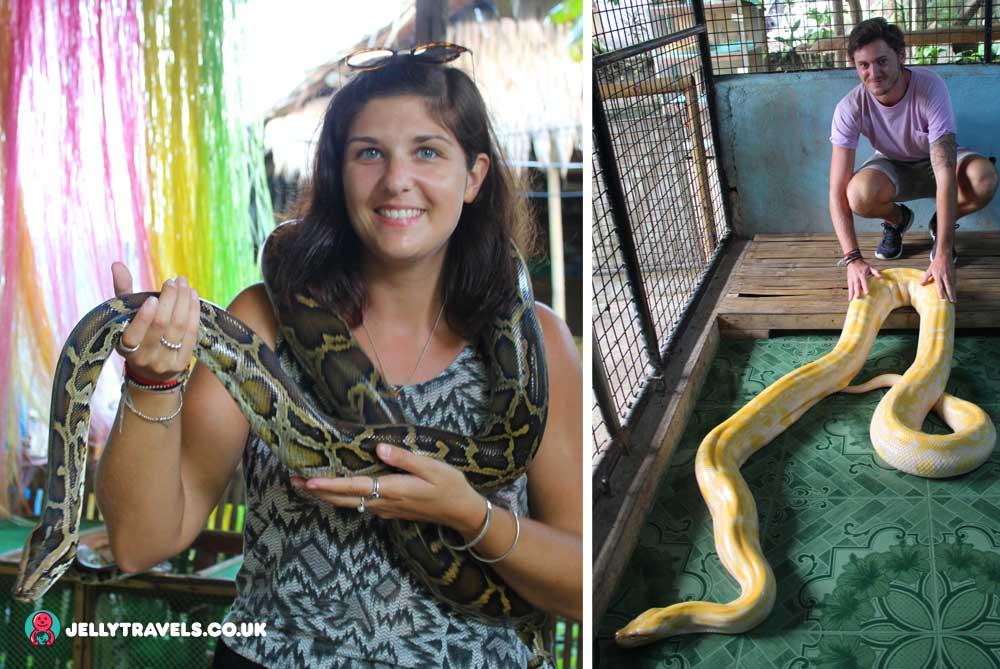 python-sanctuary-bohol-philippines